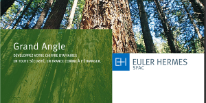 Euler hermès SFAC Grand Angle
